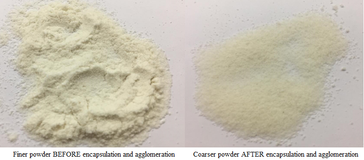 Fluid bed powder (agglomeration and encapsulation)